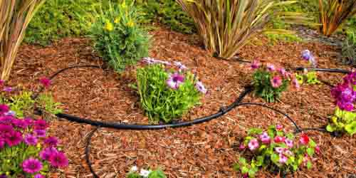 8 (DIY-Drip Irrigation kit)